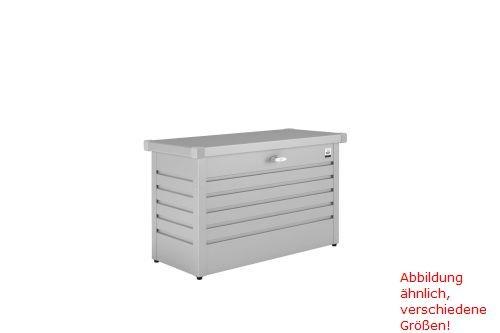Biohort FreizeitBox 100 silber-metallic